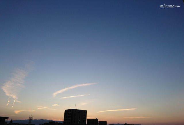 夕空xz180521