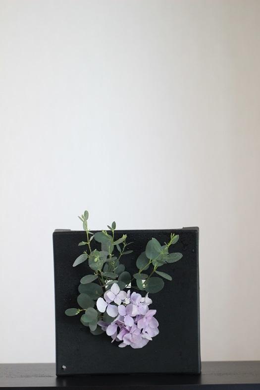 ユーカリ 紫陽花