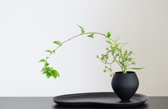 枝物 ノイバラ タカサゴユリ