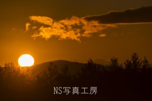 _DSC4379.jpg