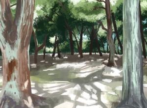 野々宮神社 写真模写