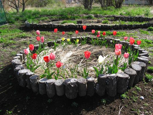 2018_4月リアンの庭3