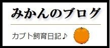https://blog-imgs-119.fc2.com/o/o/k/ookuwalab/Mikan20180919.jpg