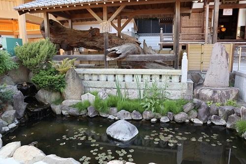 首洗いの池