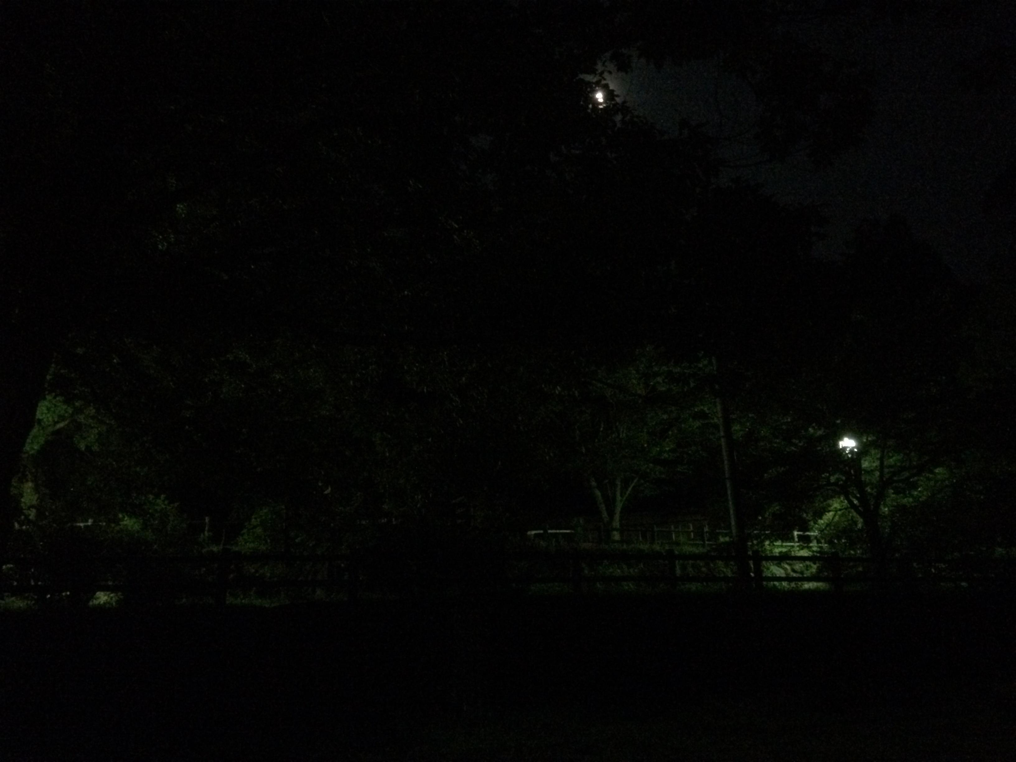 小塩ホタルの里広場キャンプ場 夜の雰囲気