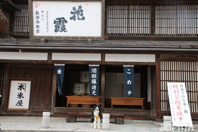 智恵子の生家