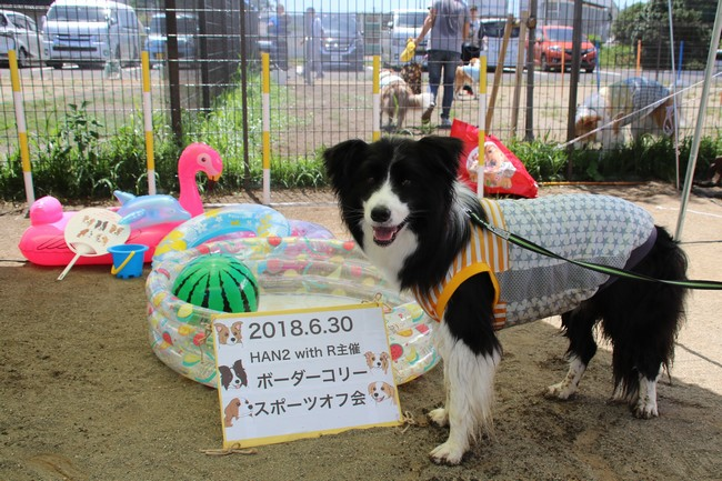 HAN2 with R 主催♡ボーダーコリースポーツオフ会②