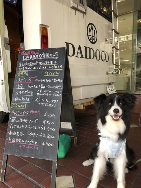DAIDOCO青果氷