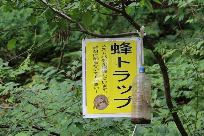 休日丸ごと大源太キャニオン