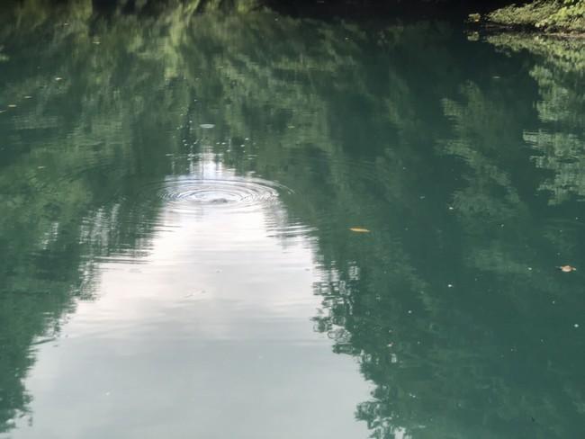 SUP進水式