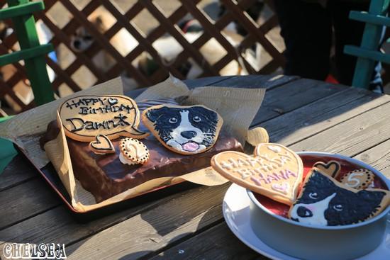 はなちゃんとDawn太の誕生日ケーキ