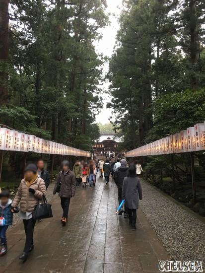 彌彦神社参道