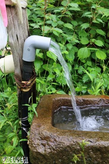 二箇所目の湧き水