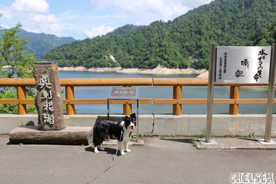 矢木沢ダム_八木沢湖