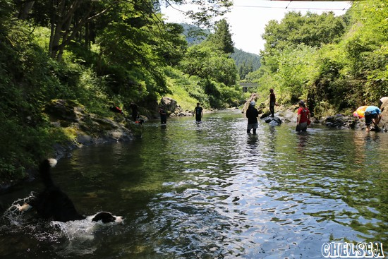 ボーダー渓谷de遊ボー会