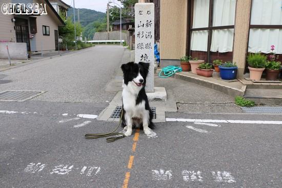 山形-新潟の県境をまたぐDawn太