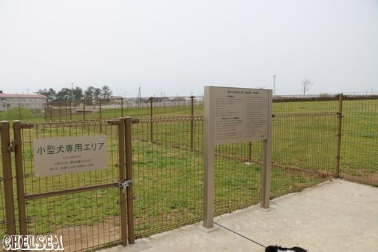 河川敷公園ドッグラン