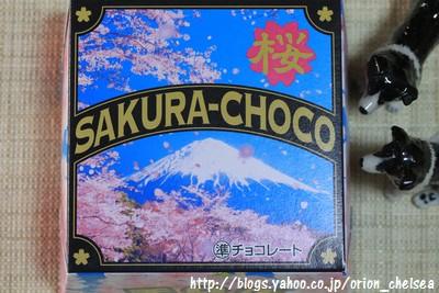 チロル_SAKURA-CHOCO