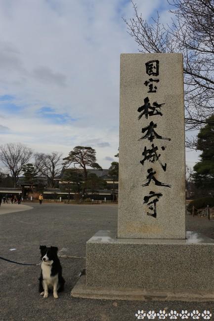 国宝松本城とDawn太