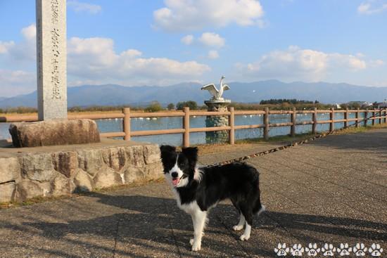 Dawn太_237日_瓢湖