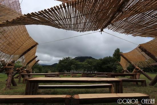 timber messenger_上堰潟