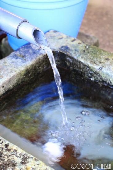 善作茶屋の水