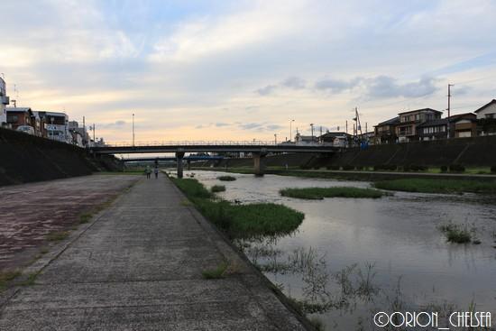 加茂川下流部