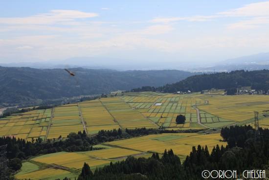 山本山からの眺め