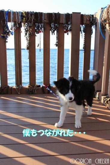 初めての日本海