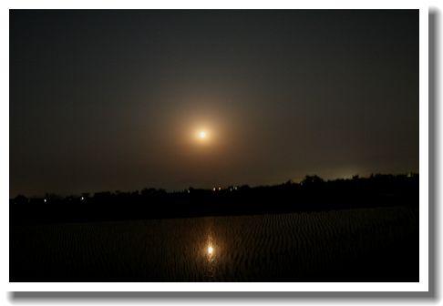 田んぼの水に映る満月