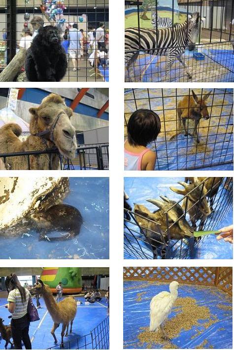 ふれ愛動物王国2006