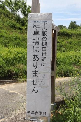 千早赤阪村棚田