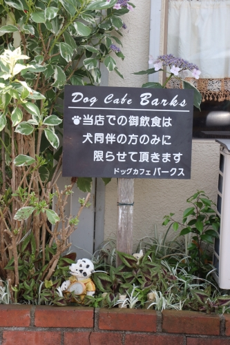 Dog Cafe Barks