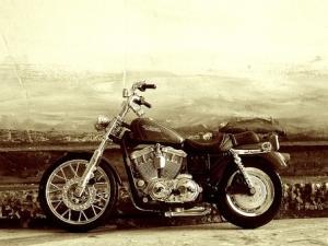 bike-2446219__340.jpg
