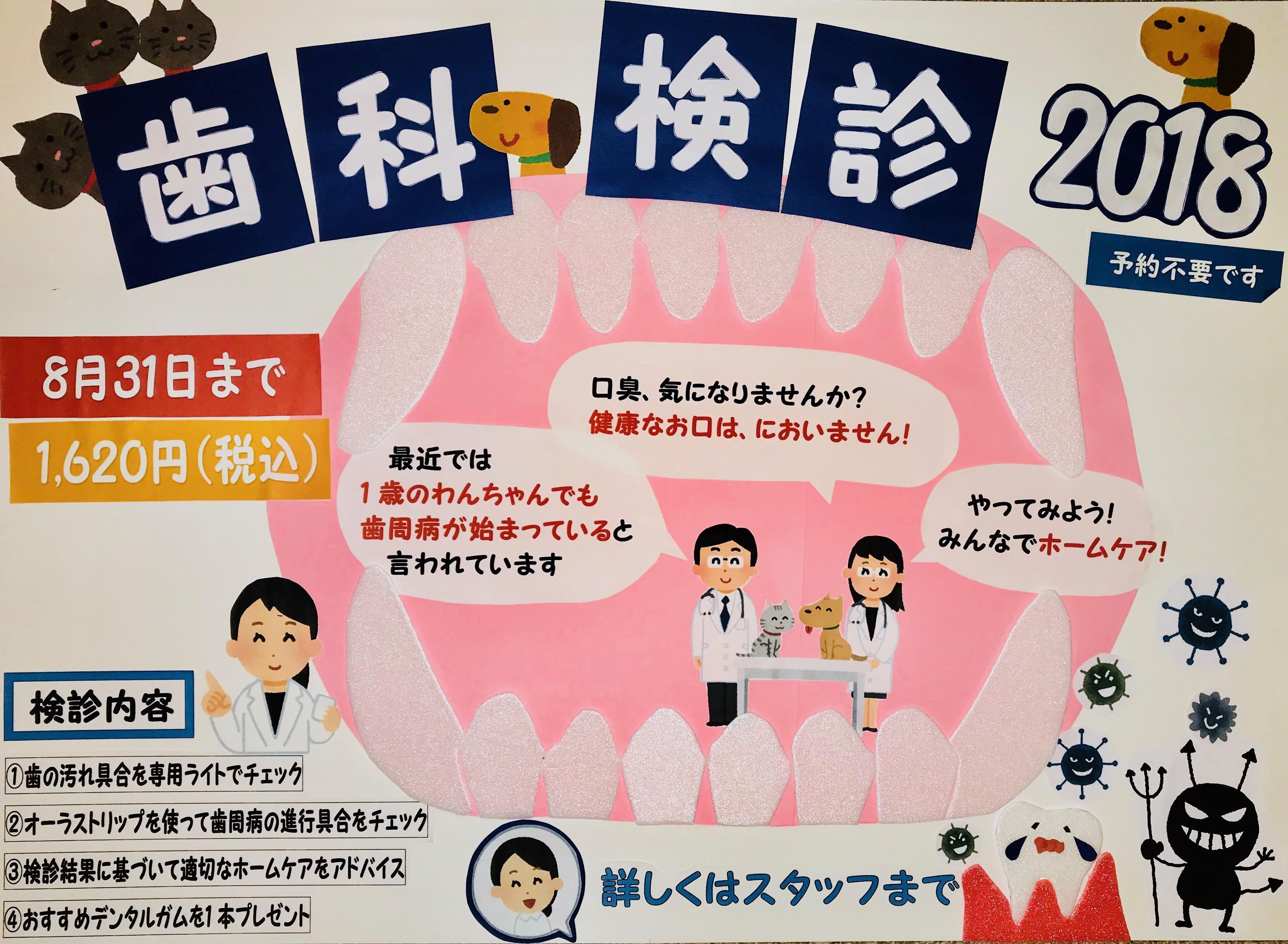 歯科検診ポスター