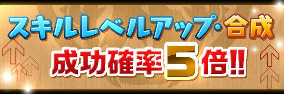 skill_seikou5x_20180803174012170.jpg