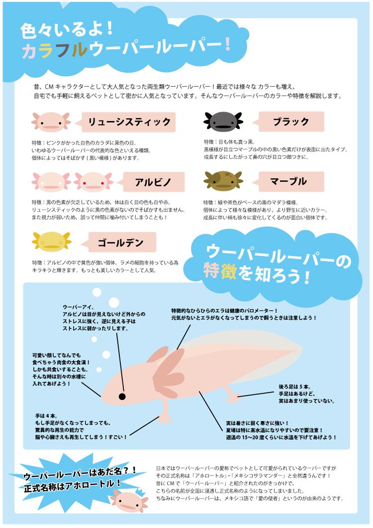 gakumonn3.jpg