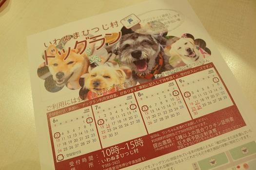 IMG_82892.jpg