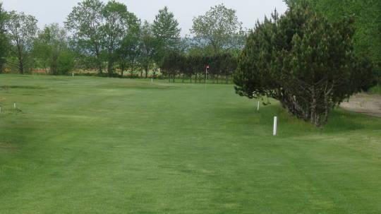 遠軽パークゴルフ ひまわり (4)