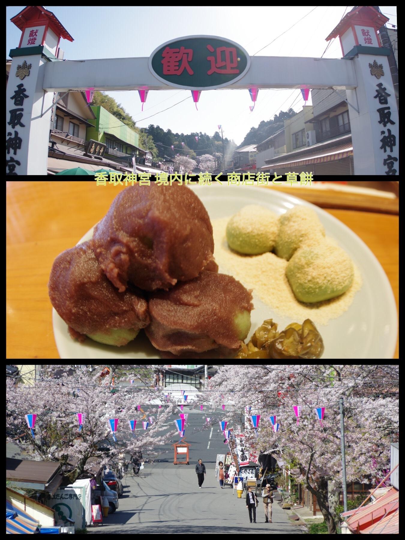 千葉 佐原 香取神宮桜 ザファームグランピング