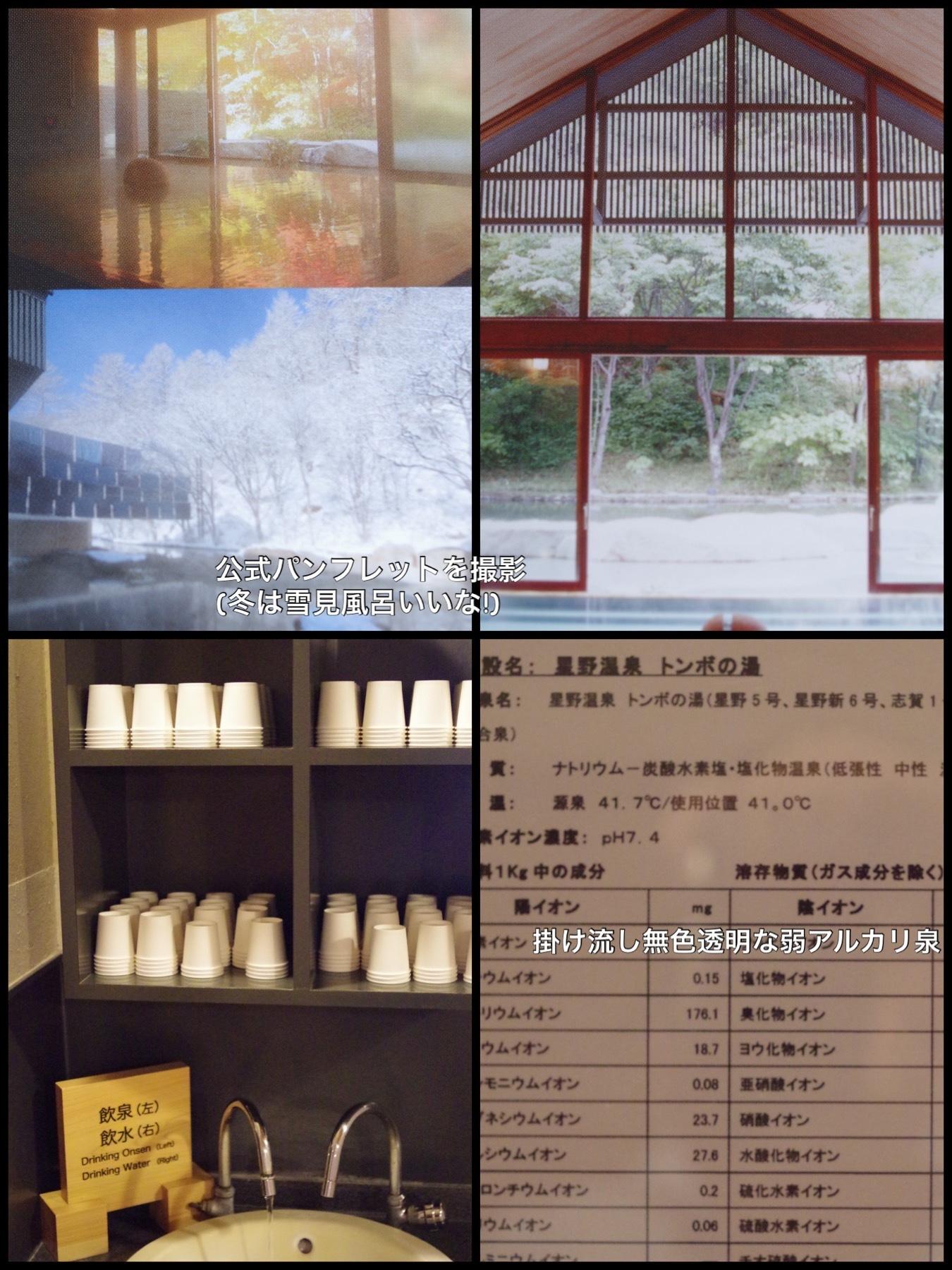 軽井沢ブレストンコートホテル テラスヴィラ トンボの湯