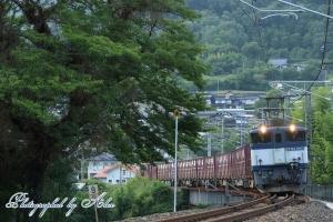 3088レ(=EF64-1043牽引)