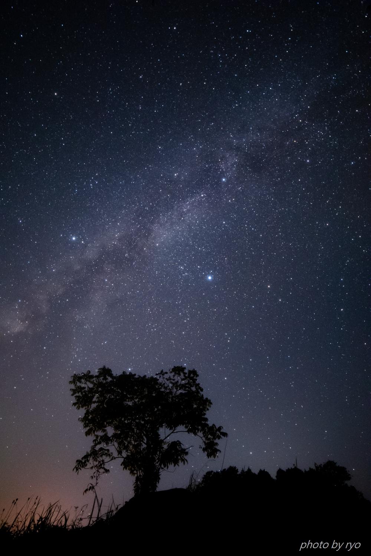 星が瞬く夜に