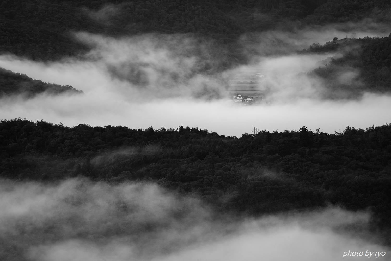 少しだけ霧の朝に_1