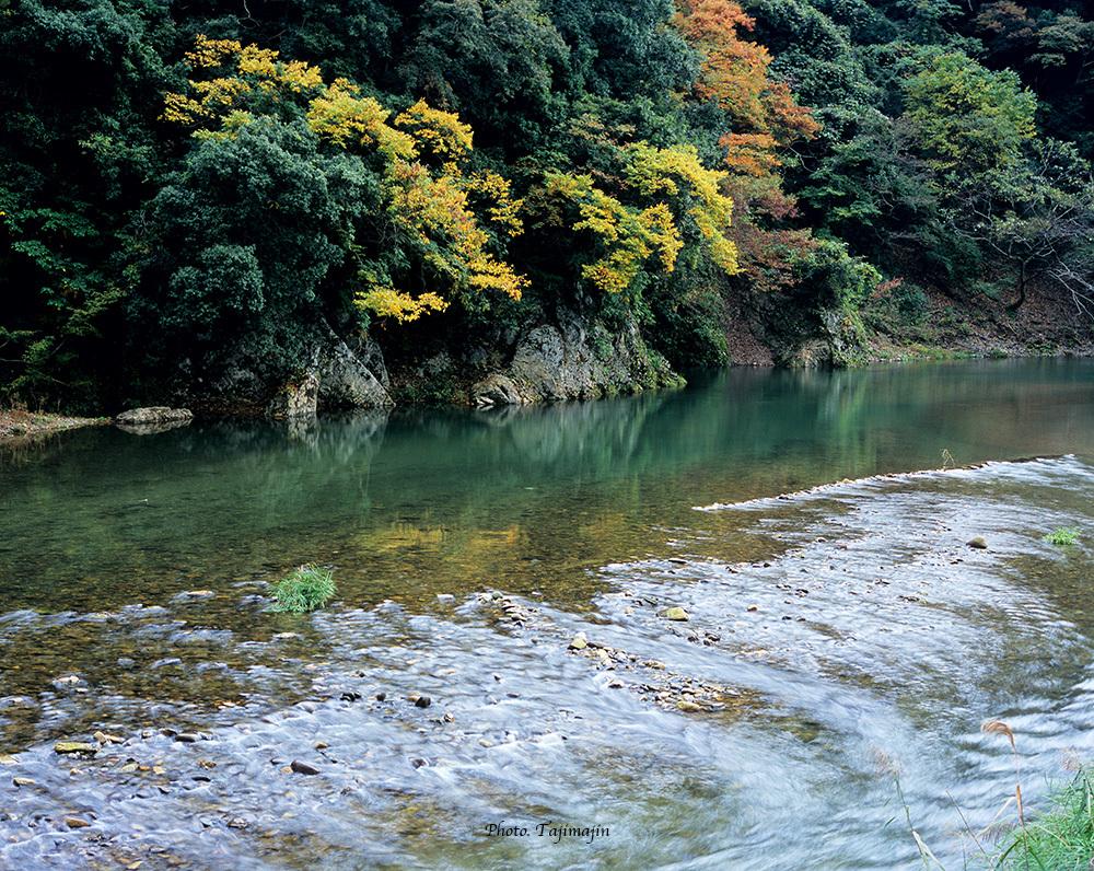 矢田川-5