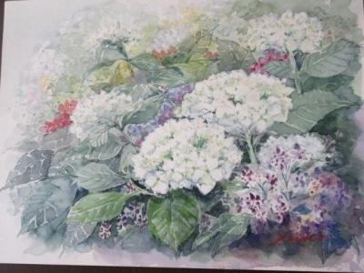 180624-3.jpg