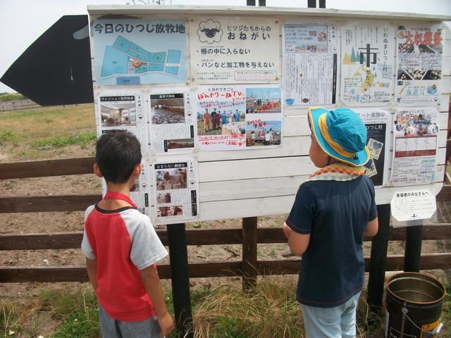 ひつじ村2