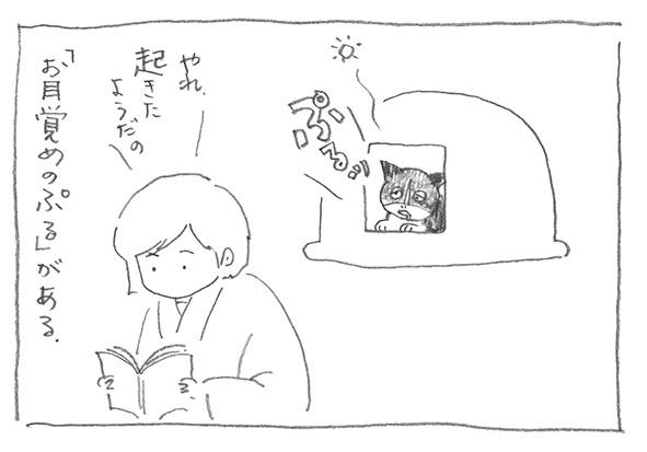 5-ぷるっ