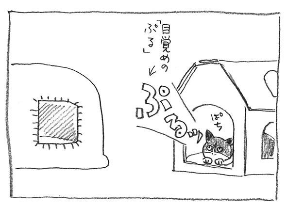 6-目覚めのぷる