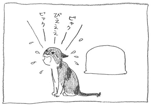 9-ビエー